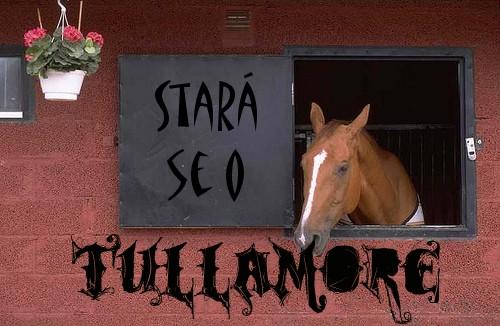 Stará se o Tullamore